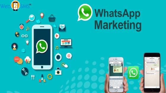 Whatsapp Marketing In India